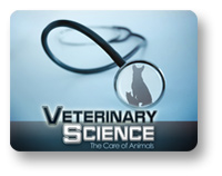 Veterinary Science: The Care of Animals